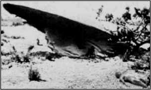 ufo crash 1947 - photo #15